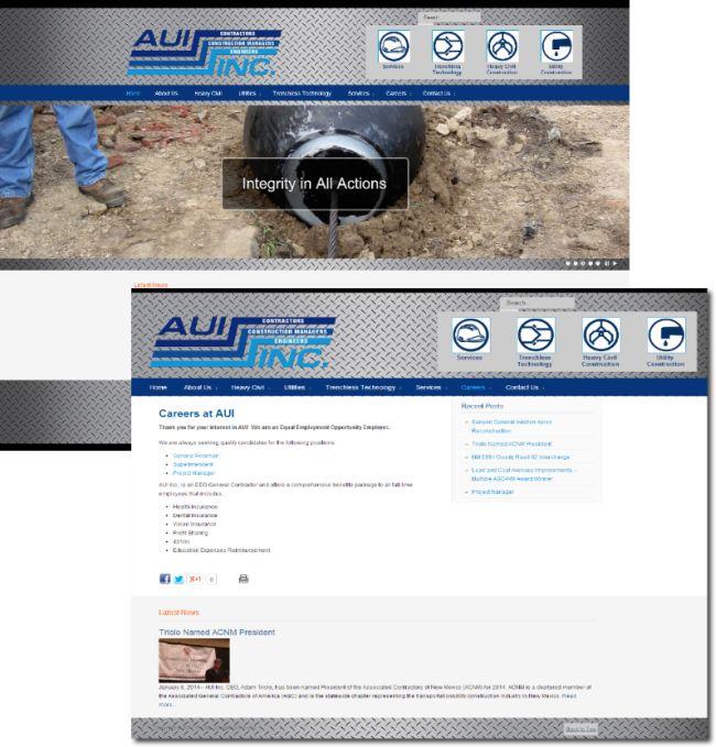 AUI, Inc. portfolio preview