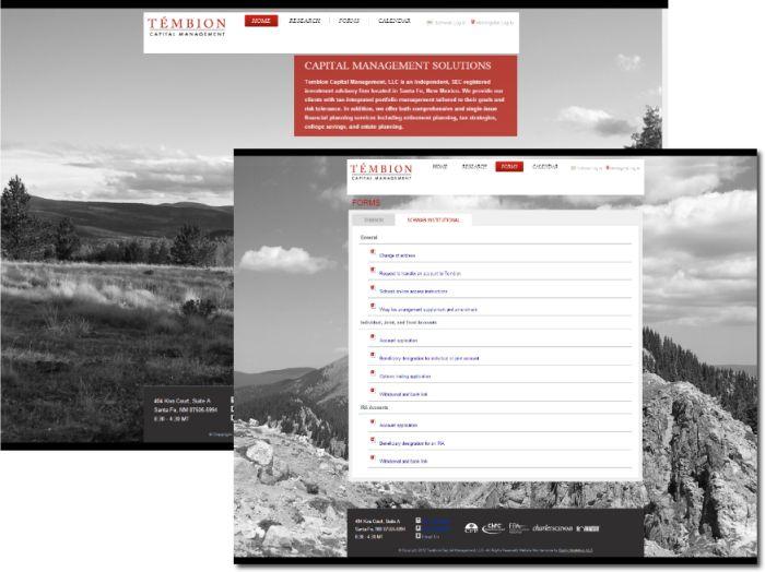 Tembion Capital Management Portfolio preview